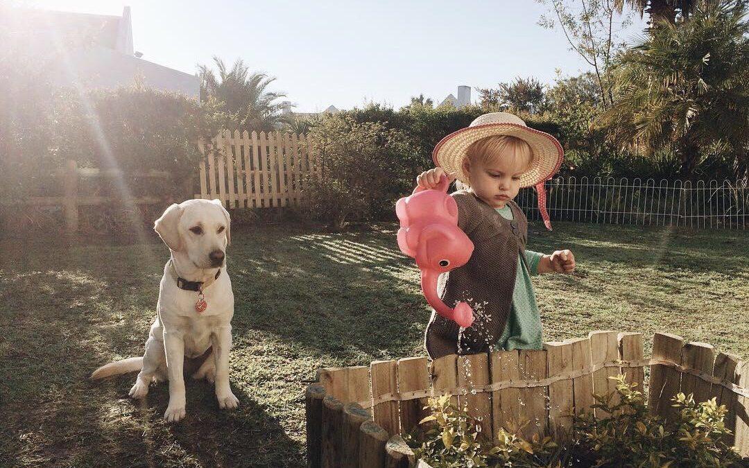 Comment aménager un espace pour les enfants dans le jardin ?