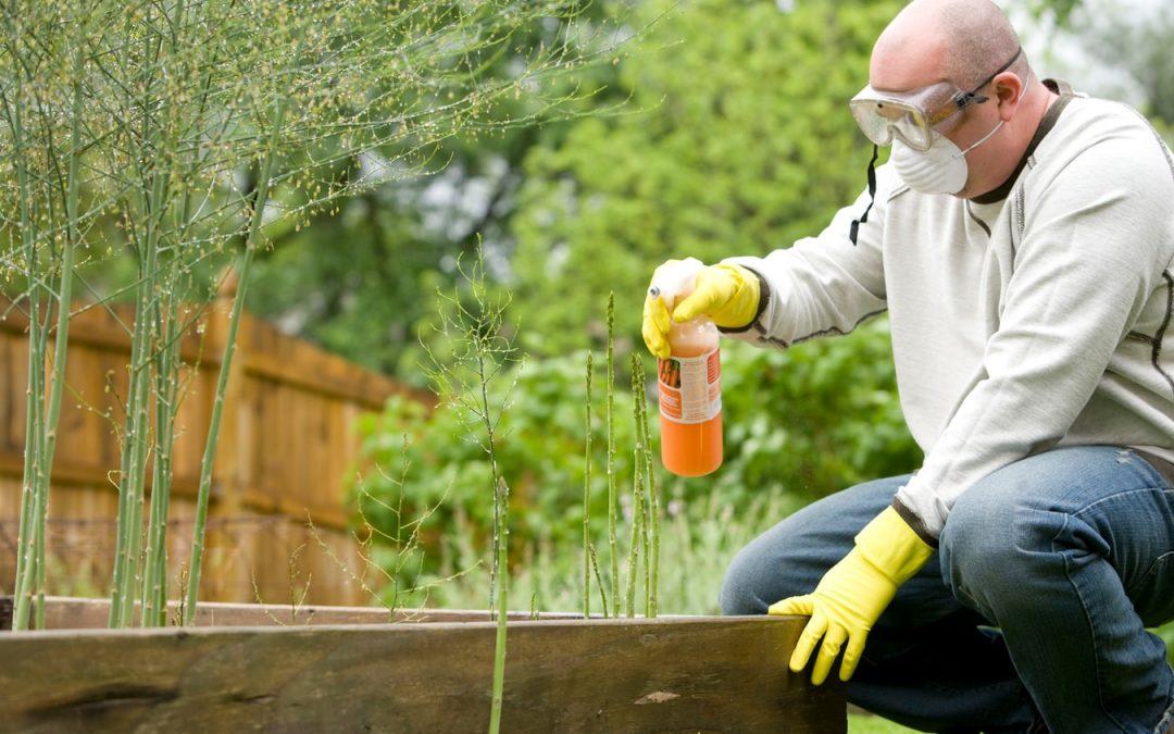 Remettez votre jardin à un professionnel : Les erreurs que commettent les jardiniers amateurs
