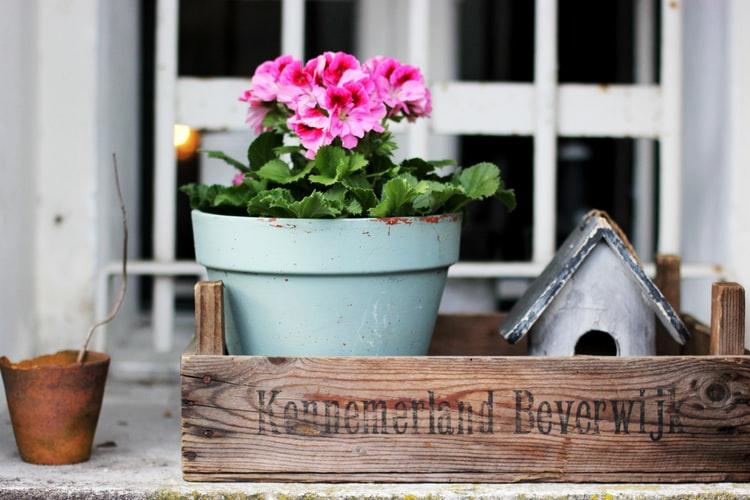 Penser à aménager un jardin pour vos enfants.