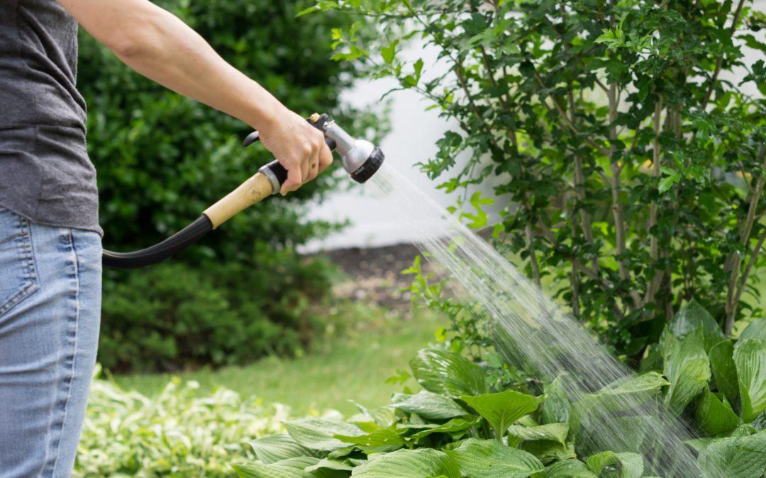 Prendre soin du jardin, que utiliser ?